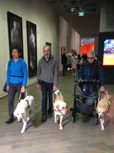 Three guide dogs and their handlers walking down the corridor to the Monet exhibition at the National Gallery