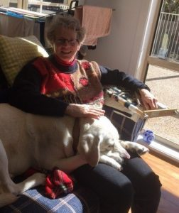 Comet's favourite relaxed position in the sun - lying across the lap of Aunty Polly